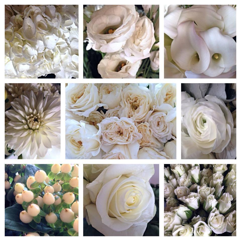 6:22 floral